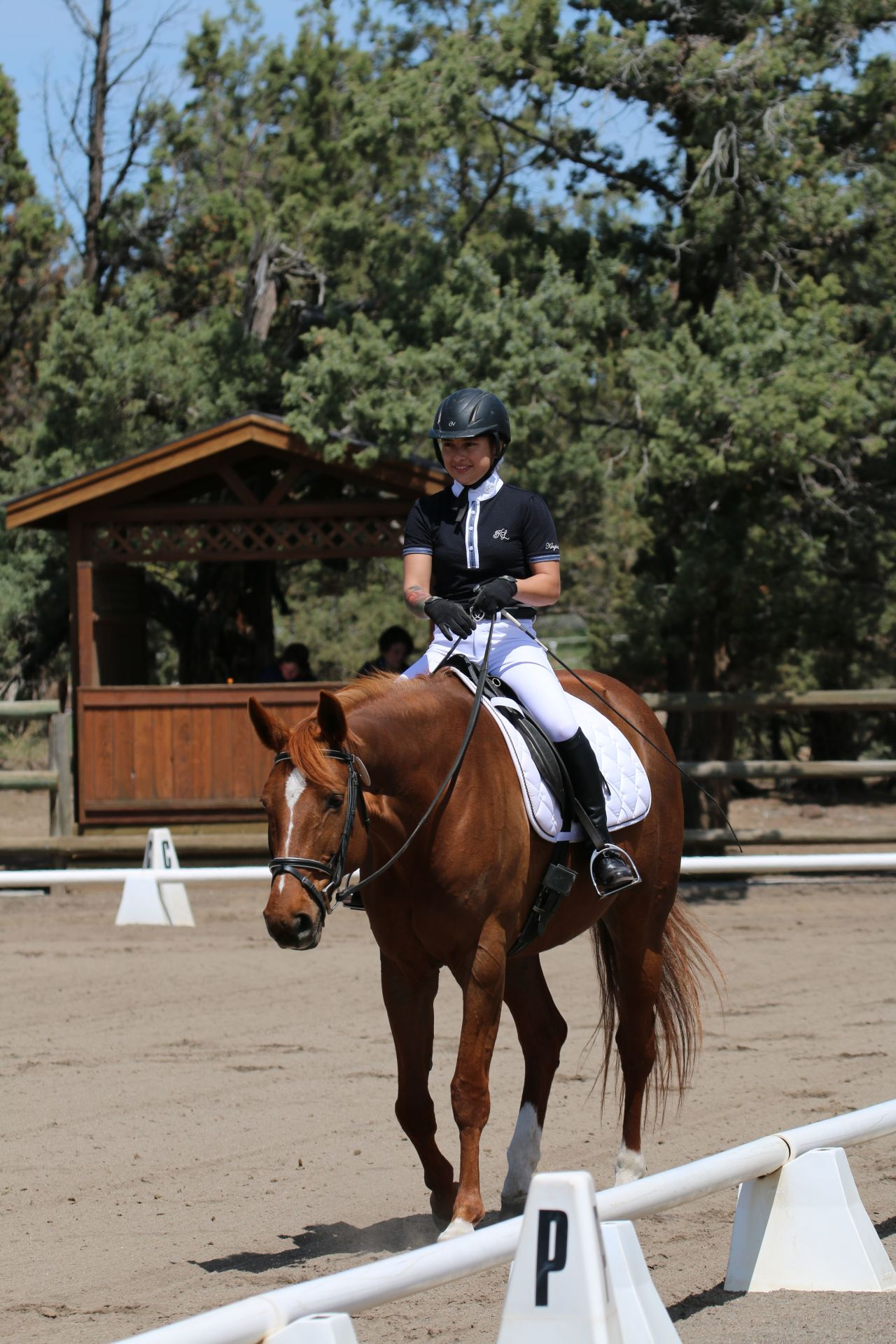Natalie Perry Dressage Horse Boarding Bend Oregon